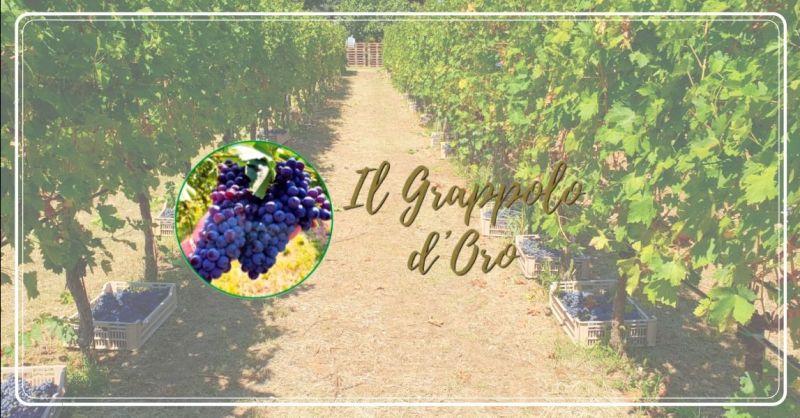 Offerta di lavoro bracciante raccolta uva Verona - occasione ricerca personale agricolo Vicenza